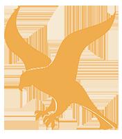 Falcon framework